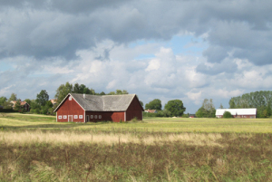 Countryside in Sweden