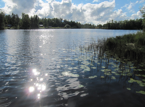 a small lake in Sweden